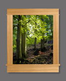 Photo Mural 6nz_34x40AC1white_oak